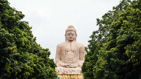 Daibutsu, The Great Buddha Statue in meditation pose or Dhyana Mudra seated on a lotus in open air with trees in foreground near Mahabodhi Temple at Bodh Gaya, Bihar, India