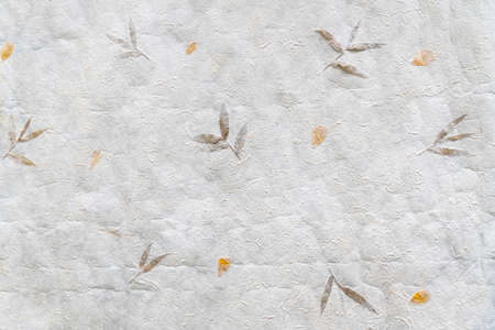 Top view of crumpled Japanese paper (Washi). Paper that uses local fiber, processed by hand and made in the traditional manner. Decorated with leaves and petals. Paper background, Paper texture.
