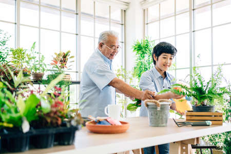 Asian retirement grandfather and his grandson spending quality time together insulated at home. Enjoy taking care of plants, watering. Family bonding between old and young. Concept of quarantine. 版權商用圖片