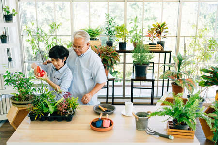 Asian retirement grandfather and his grandson spending quality time together insulated at home. Enjoy taking care of plants, watering. Family bonding between old and young. Concept of quarantine. Banco de Imagens