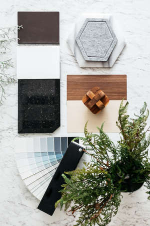 Top view of Material Selections including Granite tile, Marble tile, Acoustic tile, Walnut and Ash Wood Laminate and Painted color swatch with plant and flowers on marble top table. 免版税图像