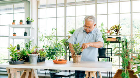 Asian retired grandfathers love to take care of the plants by scooping the soil in preparation for planting trees. Retirement activities.