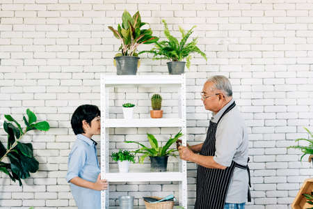 Asian retirement grandfather and his grandson with smiles, spending quality time together by enjoy taking care of plants in an indoor garden. Family bonding between old and young. Pensioner lifestyle.