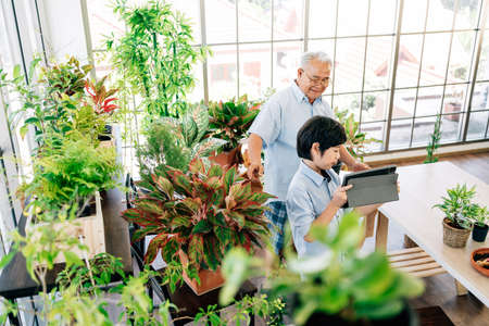 Asian retirement grandfather and grandson live to sell plants on a tablet with fun in indoor garden. Retirement hobby and lifestyle. Family bonding between old and young. 免版税图像
