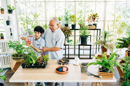 An Asian retired grandfather and his grandson spend quality time together at home. Enjoy taking care by watering plants. The family bond between children and adults