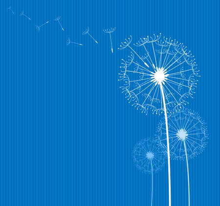 dandelion in the wind on blue textile background
