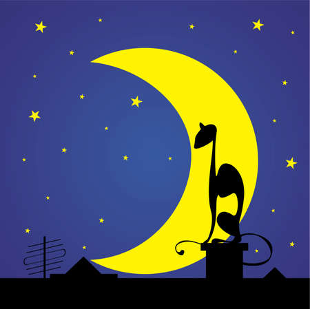 black cats silhouette on the roof against moon and stars Vector