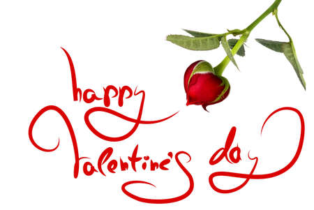 greetings for valentines day and heart from rose isolated on white photo