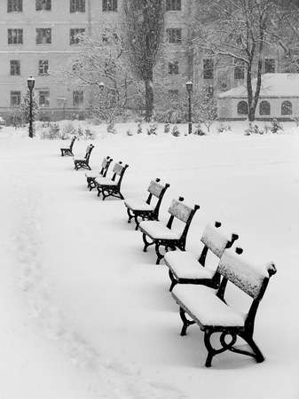 snowing: Benches in snow