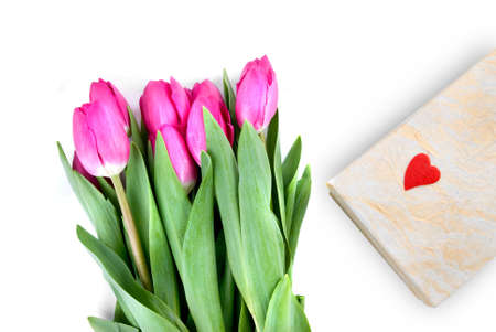 close-up pink tulips with gift isolated on white photo