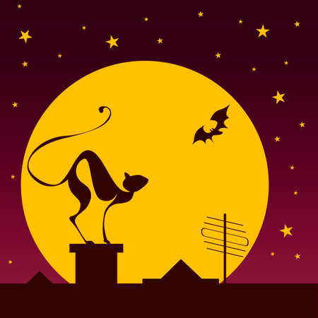 silhouettes of black cat and bat against moon in halloween night photo