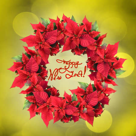 christmas wreath from poinsettia on yellow light background photo