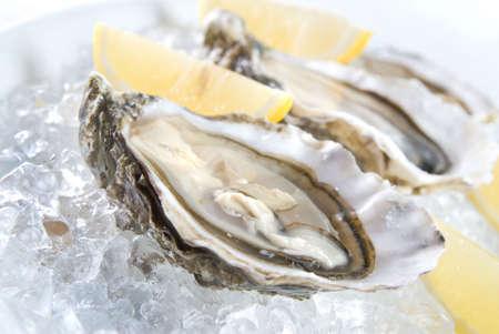 fisch eis: rohe Austern mit Zitrone und Eis Lizenzfreie Bilder