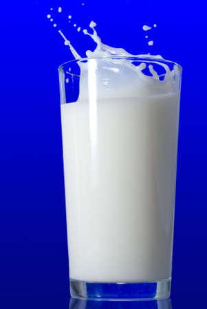 Milk splash isolated on blue photo