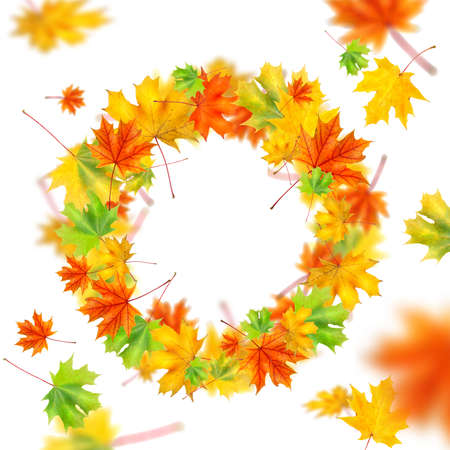 wreath from autumn leaves isolated on white photo