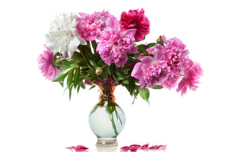 boquet of peony in the vase isolated on white