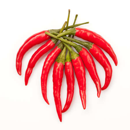 capsicums: chili pepper isolated on white