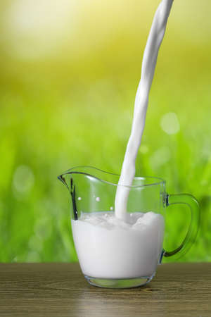 milk jugs: Milk pouring into the glass on nature background