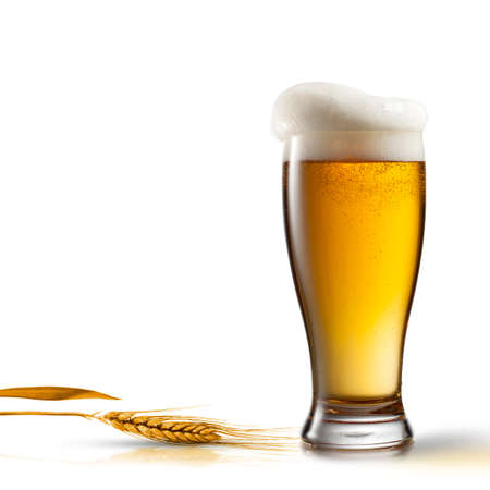 pint glass: Beer in glass and wheat isolated on white