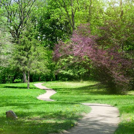 életmód: zöld park tavasszal Stock fotó