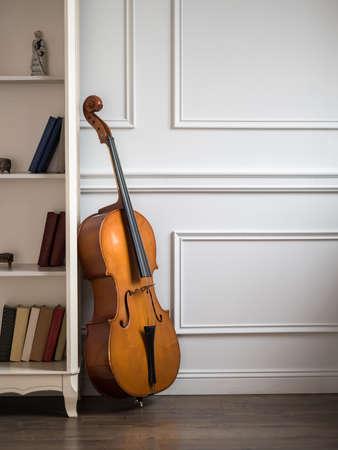 violin background: Cello in classical interior near bookshelf