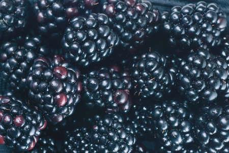 blackberry: background from blackberry