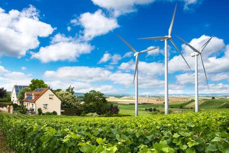 Domy z paneli słonecznych na dachu i turbiny wiatrowe w pobliżu. Letni krajobraz z zielonej winnicy. Eko koncepcji energetycznej. Zdjęcie Seryjne