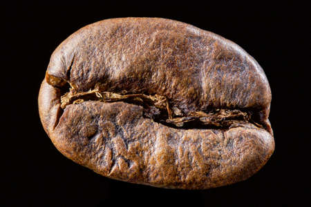 Coffee bean isolated on black background. Big size close up photo of single bean Stock Photo
