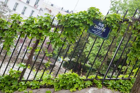 Clôture couvert de lierre vert en face d'une maison. Banque d'images - 57929728