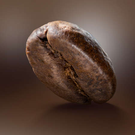 Macro photo of coffee bean. Big size close up photo of single bean on abstract brown background