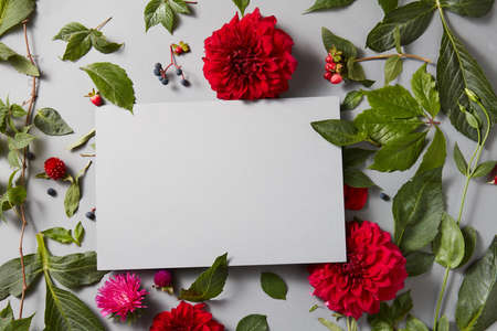 Beautiful spring floral frame on a gray background is made of red flowers with a special place for your text