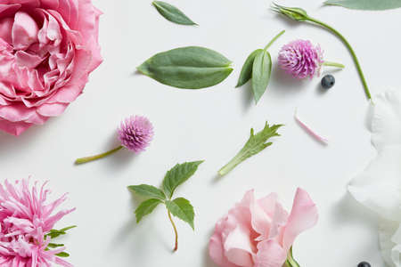 Assorted flowers heads. Various soft roses and leaves scattered on a white background, overhead view