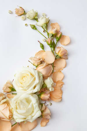 Composition of white and orange roses represented on white background. Ornament may be used as decoration for wedding car or post card in Valentines Day.