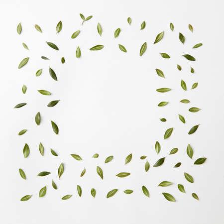 is green: green leaves frame