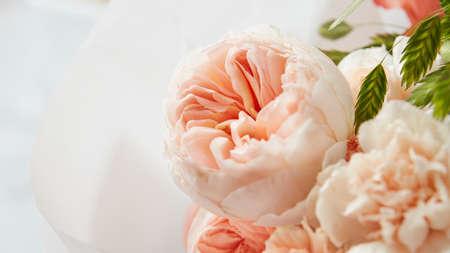 Roses sur fond blanc Banque d'images - 73469921