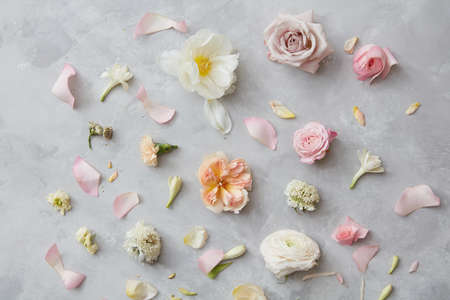Composition of flowers on grey background