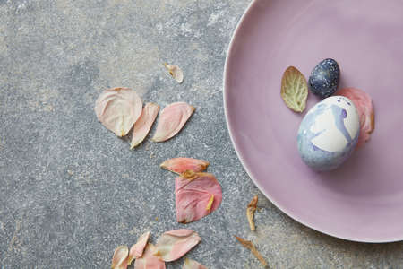 blue petals: Blue easter eggs on plate with dried petals Stock Photo