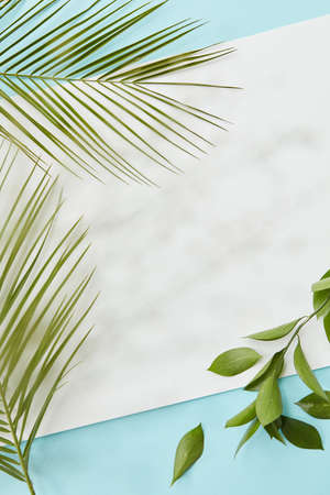Palm green leaves covering blank copy space
