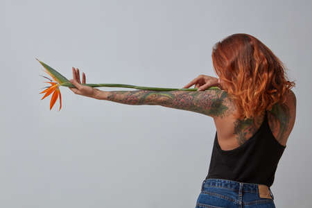 Stylish red-haired girl with a tattoo from back holds a strelitzia flower around a gray background. Photo as a layout for your ideas Stock Photo
