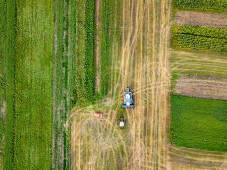 Agricultural field after harvesting and combine harvester reaps a crop, red car on a field. Aerial view from the drone. Top view