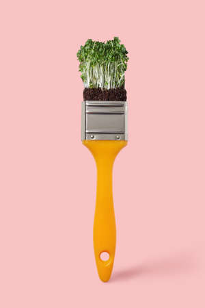 Natural fresh microgreen on a yellow paint brush on a color background of the year 2019 Living Coral Pantone, copy space. Painting organic food 免版税图像