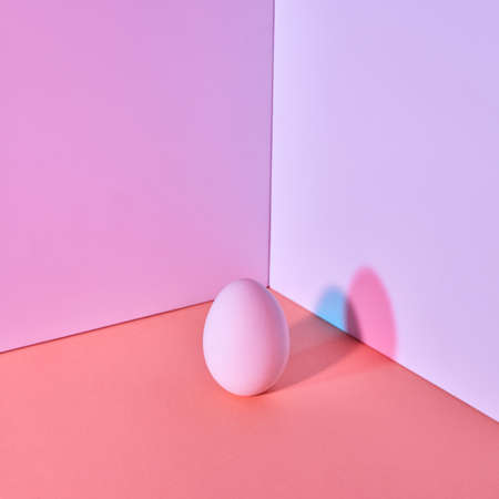 Easter color egg on a multi-colored lilac coral-purple background with a reflection of blue-pink shadows and copy space. Creative layout. Banco de Imagens