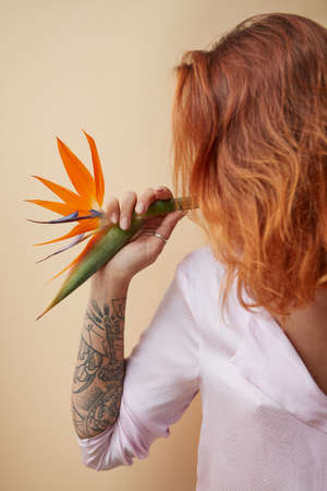 Strelitzia flower decorating the shoulder of a red-haired girl with a tattoo on a beige background with space for text. Creative layout Stock Photo