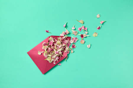 Flowers petals in purple envelope on a light turquoise background.