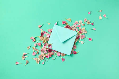 Greeting post card with flowers petals and envelope on a light turquoise background.