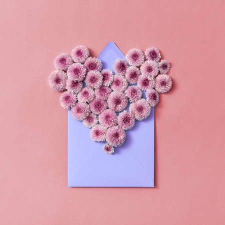 Hardy chrysanthemums heart with envelope for post card on a pastel background.