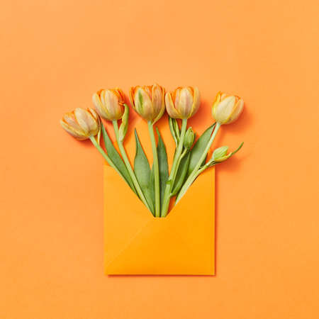 Fresh spring tulips as a gift in a craft envelope on an orange background.