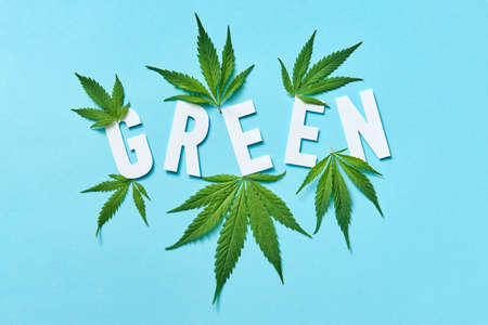 White paper word Green with marijuana leaves on a pastel blue background.