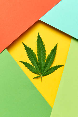 Geometric frame from colored paper with cannabis leaf. Reklamní fotografie