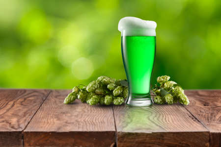 Branch of natural organic hop with glass of fresh cold green beer on a wooden table against natural blurred background, copy space. Happy St.Patrick 's Day concept.